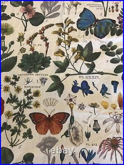 Pottery Barn Poppy Botanical Curtains Set Of 2 Panels